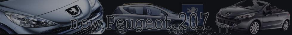 Logo de http://new.peugeot.207.free.fr/